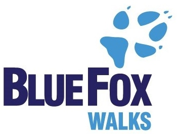 logo-blue-fox-2