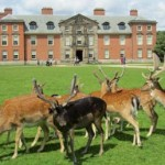 cycle-routes-dunham-massey