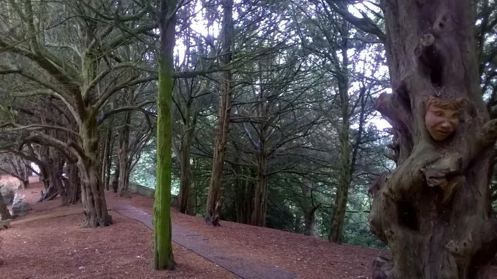 Dufton - Castle Walk2