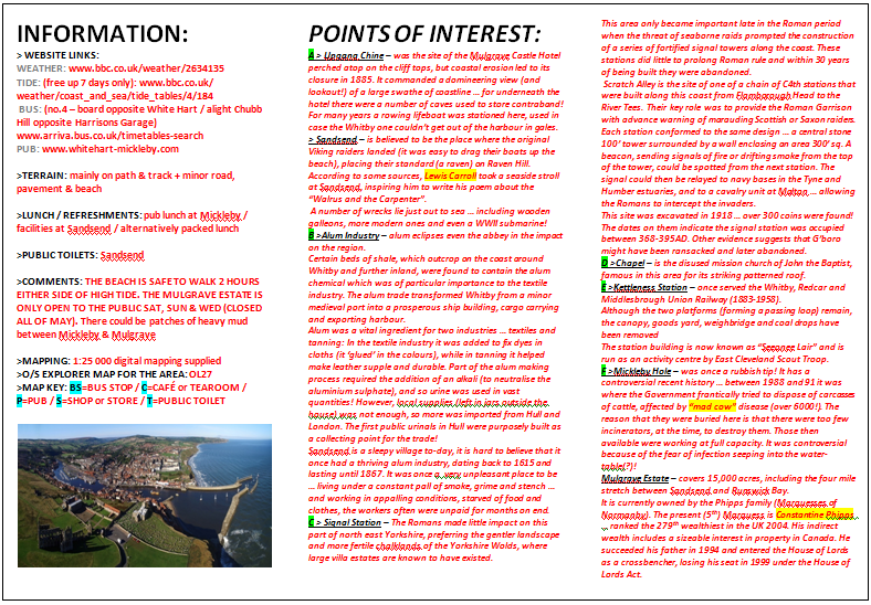 Whitby Web Page Leaflet In